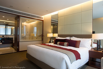 Pan Pacific Orchard Singapore (Pacific Club King Suite)
