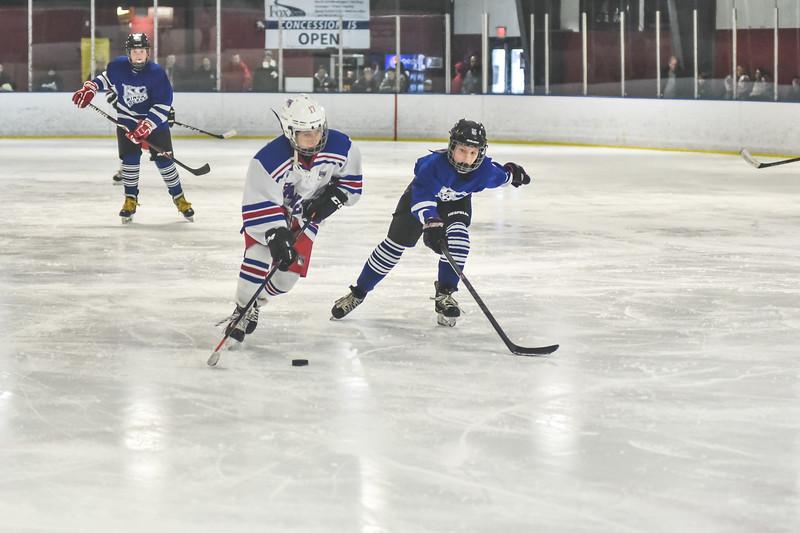 Leafs-114.jpg