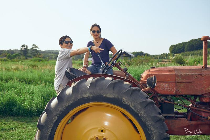 Cider Hill Farm 103.jpg