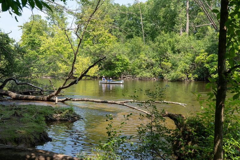 Huron River in Nichols Arboretum in Ann Arbor