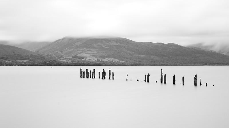 Cormorants on Loch Lomond
