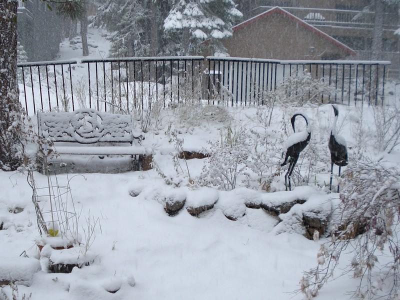 First Snow 11-24/25-2015