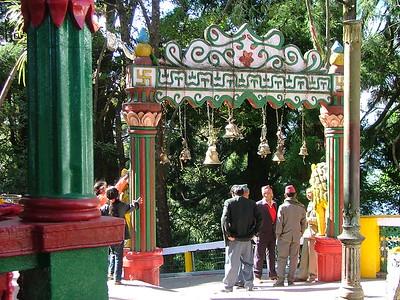 17 Darjeeling