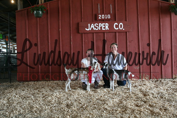 4-H Goat Show - Tuesday