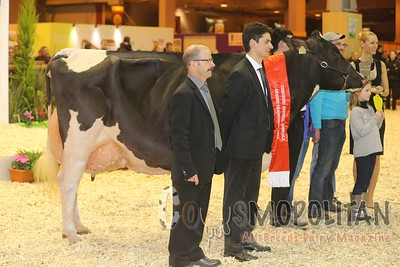 SIA Paris 2016 Holstein Grand Championship