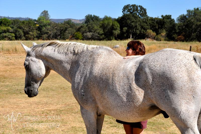 EB&Horses-047.jpg
