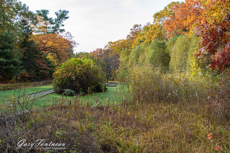 Fall Foliage-3952.jpg