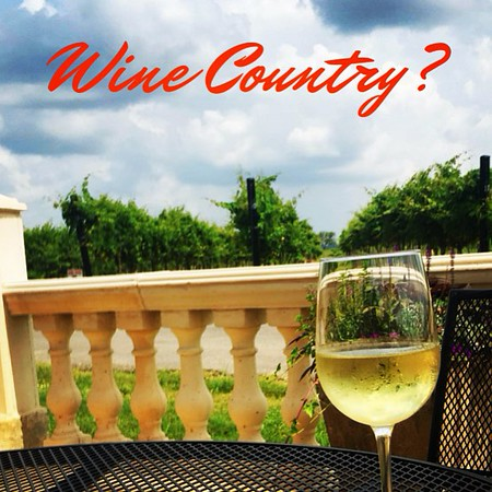 Did_you_know_that_Texas_has_the_second_largest_wine_tasting_region_in_North_America_only_second_to_Napa_Valley_And_top_10_in_the_world_If_you_haven_t_had_Texan_wine_it_s_because_Texans_love_it_so_much_they_drink_all_of_it_here.__Tempranillo_is_one_of.jpg