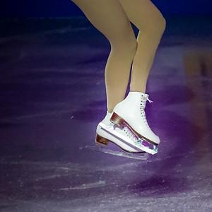 2015 U.S. skating championships