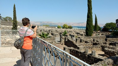 Capernaum 2017