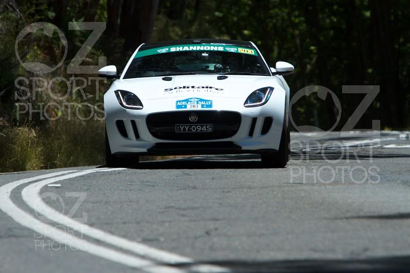 Adelaide Rally 2017 -  106.jpg