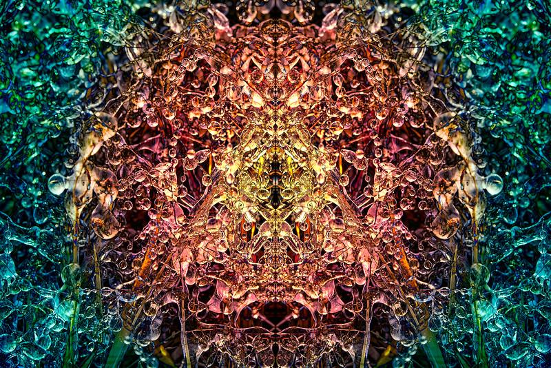 20201012-_DSC4637-Edit-Edit-mirror-1-3.jpg