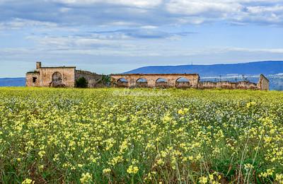 Gargano Peninsula, Puglia