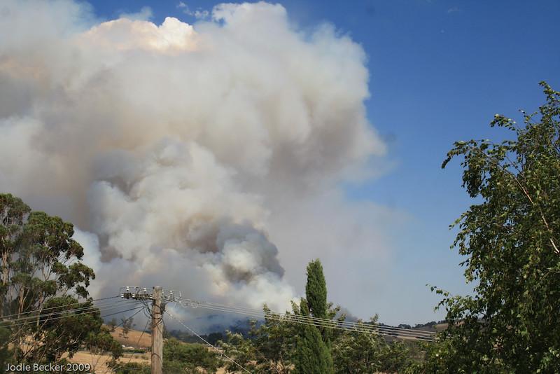 bushfires-65.jpg