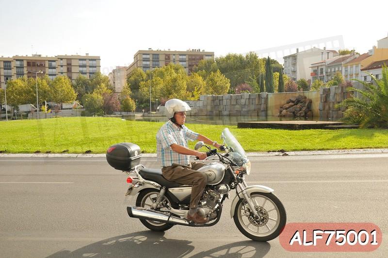 ALF75001.jpg