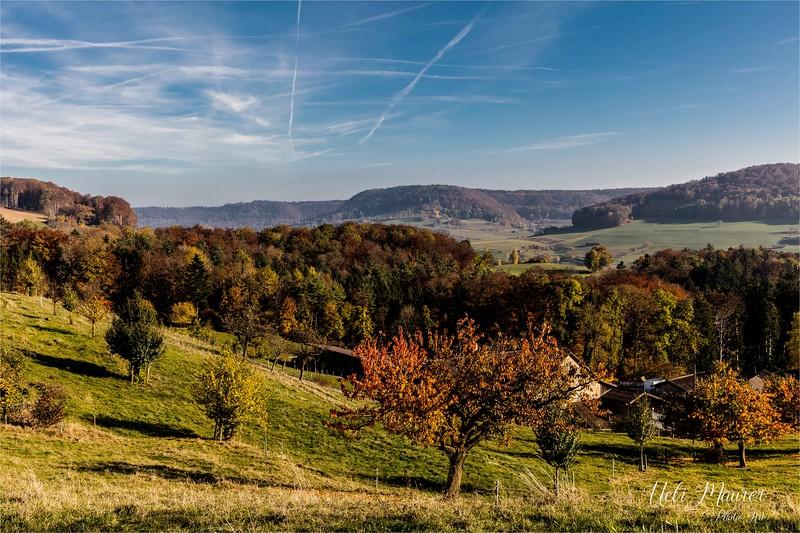 2016-10-31 Herbst Aargau - 0U5A1697.jpg