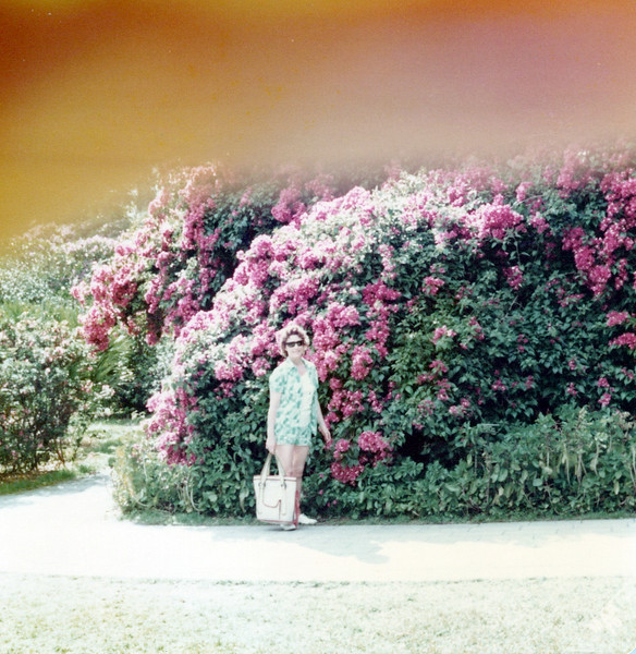 1976 viv in the azaleas.jpeg