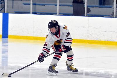 Squirt AA Michigan Ice Hawks