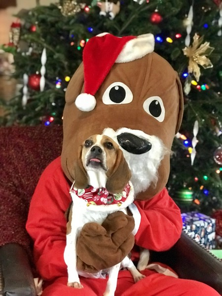 Santa Paws Daycare Party