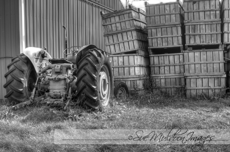 tractor black and white.jpg