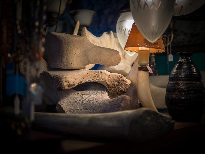 Whale bones in a Reykjavik antique shop.