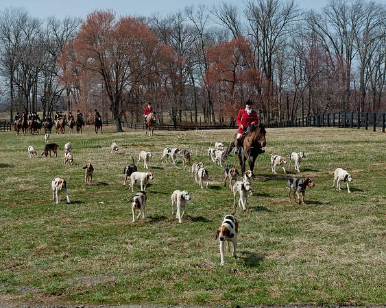 Snickersville Hunt.3-20-2011