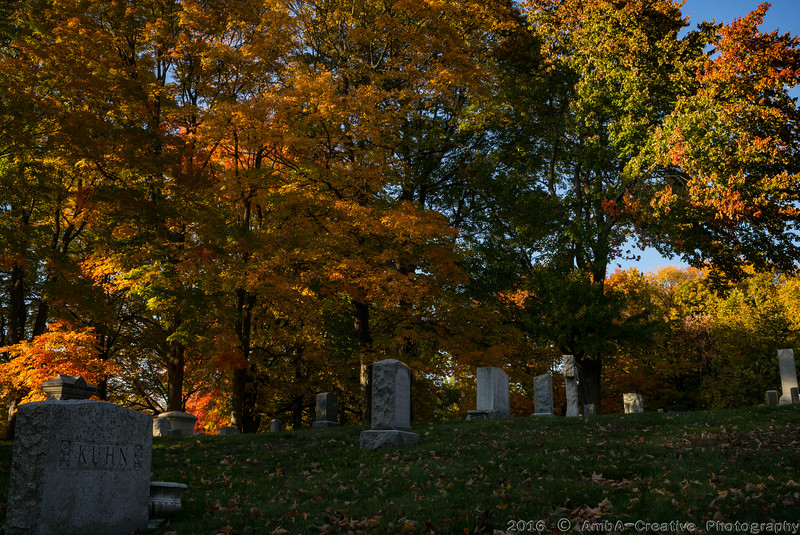 2016-10-19_Fall_Colors@MeridenCT_04.jpg