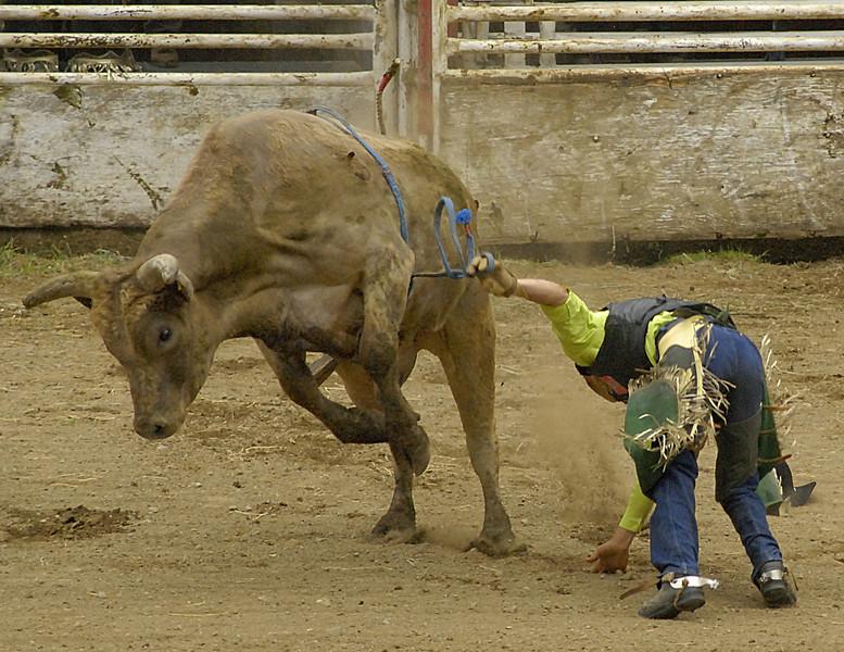 Coombs Bullarama-2008-182A.jpg