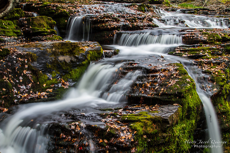 HJQphotography_FINCA_Landscape-5.jpg