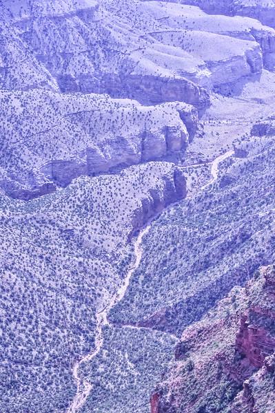 2019 Grand Canyon-271.jpg