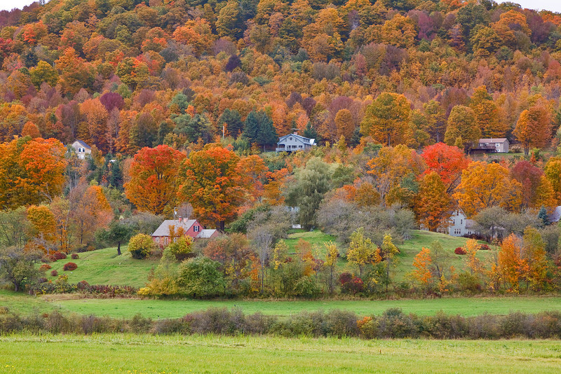 Another typical rural scene in the Pomfret area