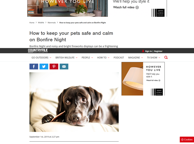 Screenshot_2019-10-17 How to keep your pets safe and calm on Bonfire Night.png