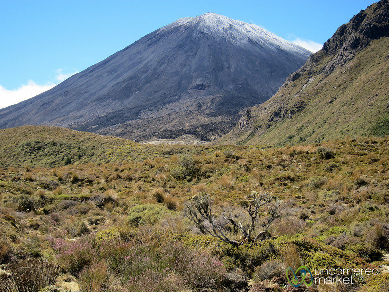 Tongariro Crossing Trek - New Zealand
