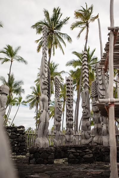 Hawaii2019-349.jpg