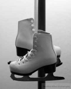 2010-01 IceSkate