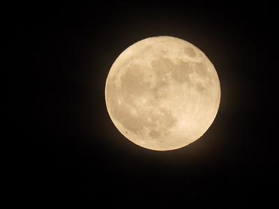 10.31.2020_Blue Moon