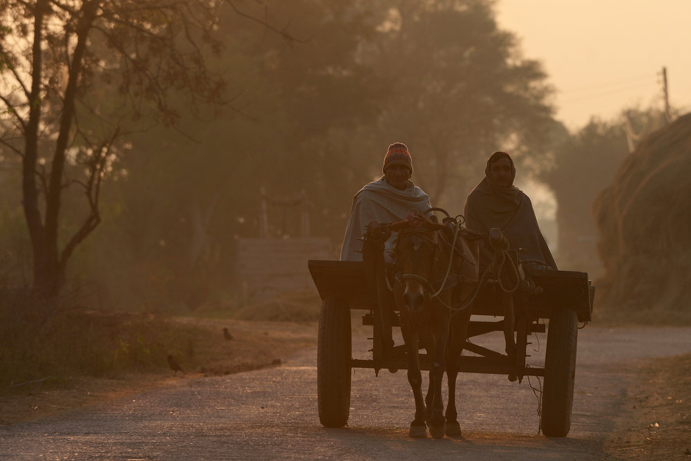 . Indian farmers ride a horse cart as they return after a day\'s work near the India-Pakistan border in Abdulian, 38 kms southwest of Jammu, on January 9, 2013. India delivered a dressing-down to Islamabad\'s envoy to Delhi as it accused Pakistan\'s army of beheading one of two soldiers killed in Kashmir, but both sides warned against inflaming tensions. TAUSEEF MUSTAFA/AFP/Getty Images