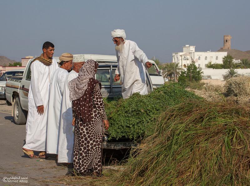 Traditional market (114)- Oman.jpg
