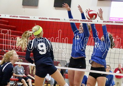 D-NH volleyball at A-P
