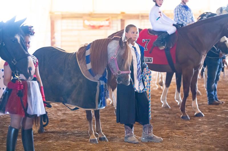 HorseCostume-42.jpg
