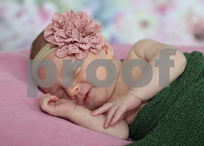 Emery Newborn