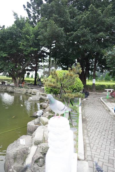 2019-12-31 Taiwan-410.jpg