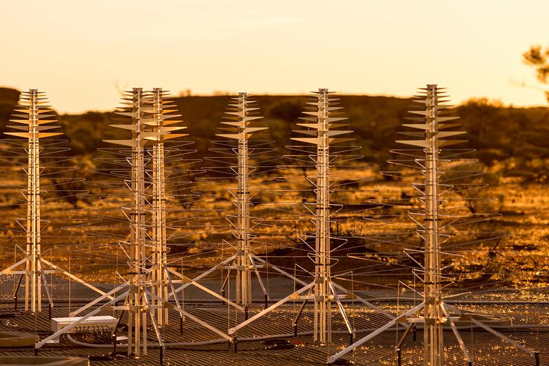 SKALA antennas belonging to the Aperture Array Verification System (AAVS) 1.5
