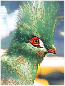 Other Bird MIX