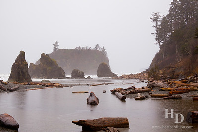 2013-03 OlympicNP
