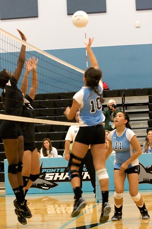 Ponte Vedra Sharks Volleyball vs Menendez 9-2-10