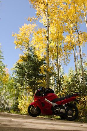 fall colors 2011