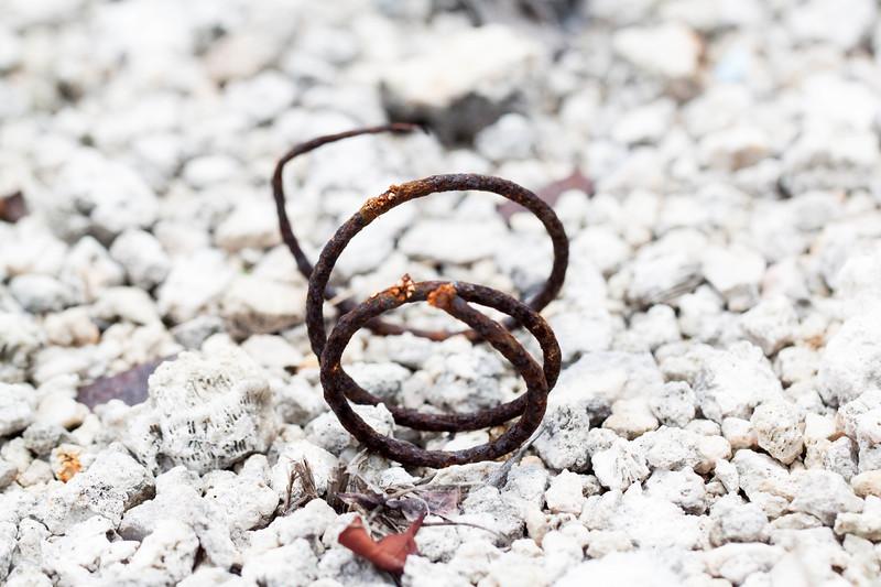 rusty spring.jpg
