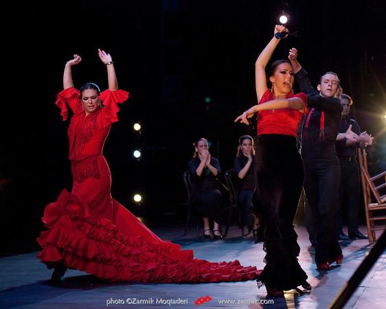 Gala Flamenca: Todo Cambia
