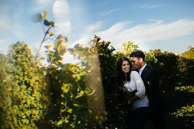 Mona + Rajan - Engagement Shoot